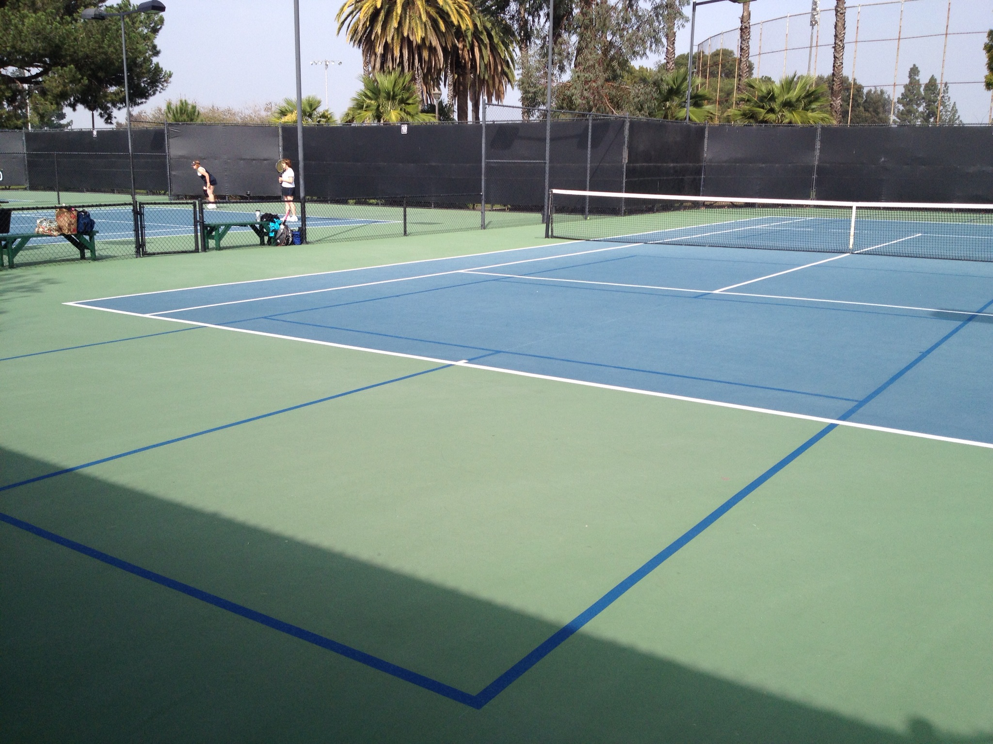 Blended Lines For Pickleball