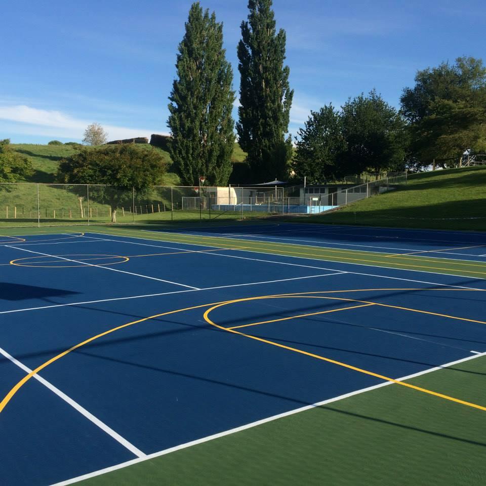 Multi Sport Backyard Courts